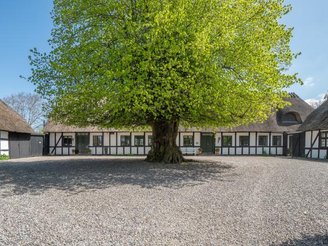 Eksklusivt renoveret landsbyskole med atmosfære og mulighed for 3 lejligheder - DSC03268_4e92647a56b99af61fc73b83bc246d0a