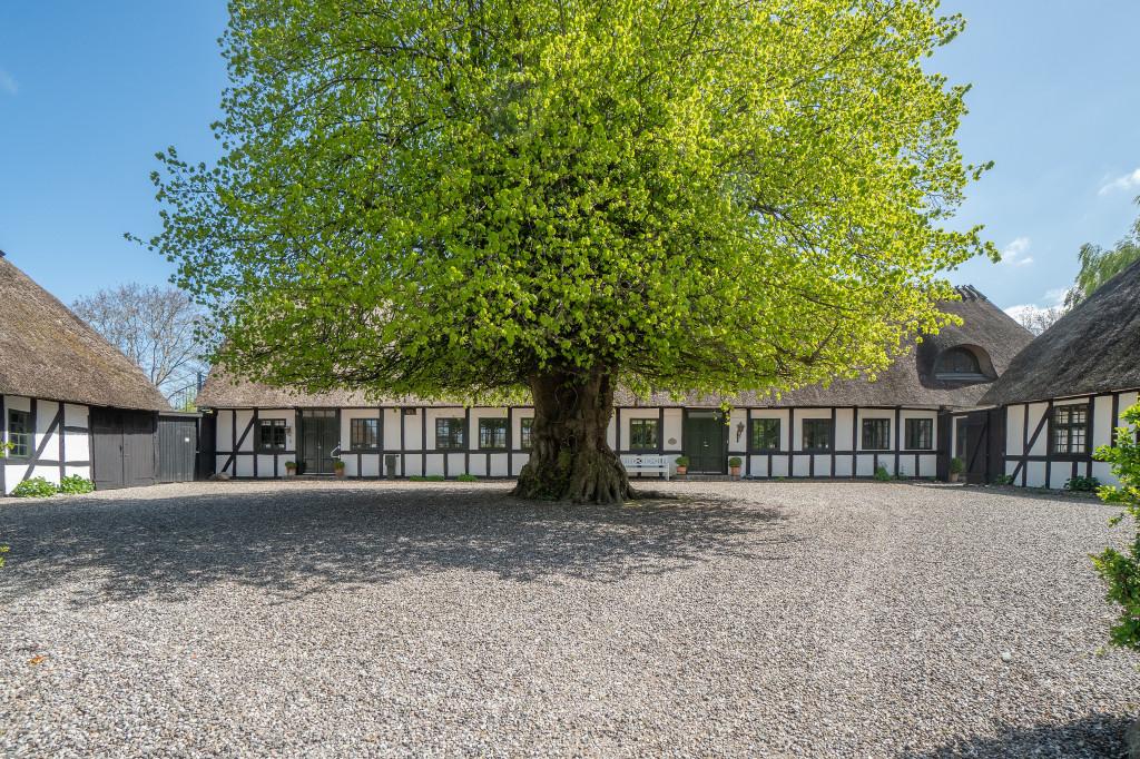 Eksklusivt renoveret landsbyskole med atmosfære og mulighed for 3 lejligheder - DSC03268_61616cfe8c404cca94326c15e97f46ae