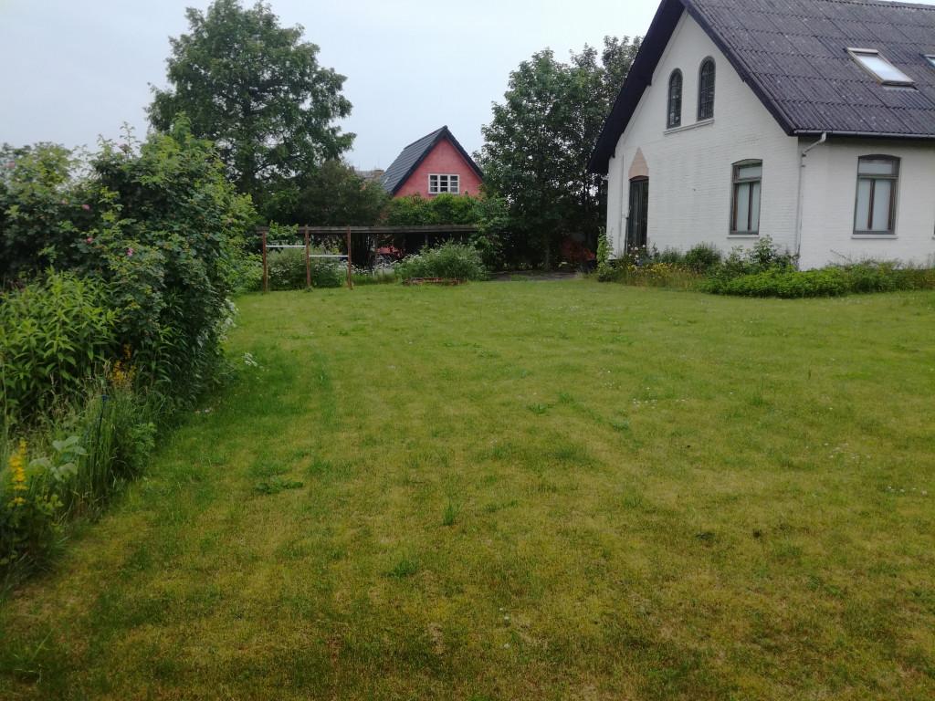 Villalejlighed i lille bofællesskab i Ballerup - IMG_20190615_133331_e06f8ef48c6a85d0538a5aa64a7751a6