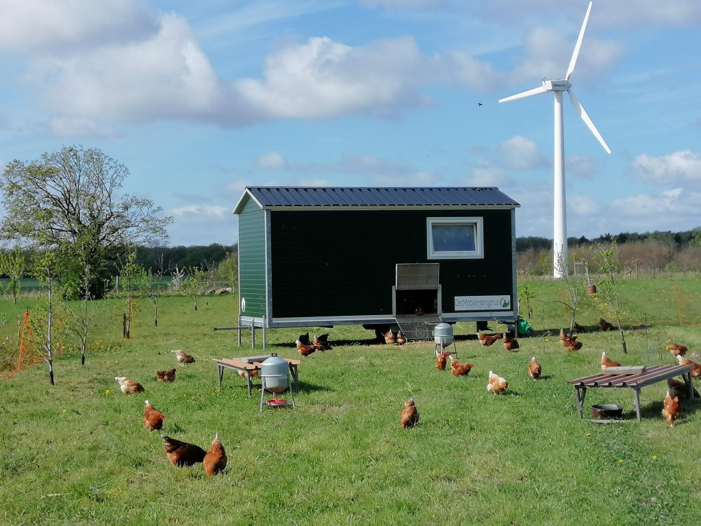 BOLIGBYTTE: Rækkehus i landbrugs- og bofællesskab  - IMG_20200504_101910_1ac5f1ee1b5f316e1ee27f260aefc2b7