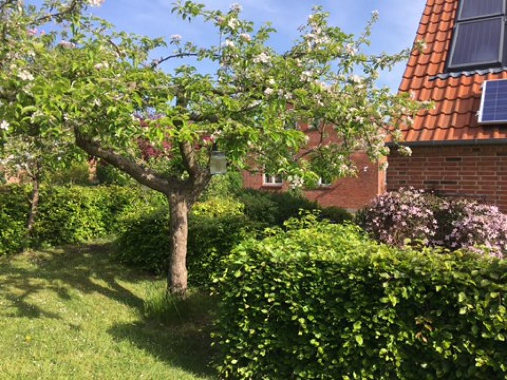 Stor  moderniseret villa i bofællesskab i  Bjert v.Kolding - IMG_3307_4f9327670bde20f96598a092a01d7db1