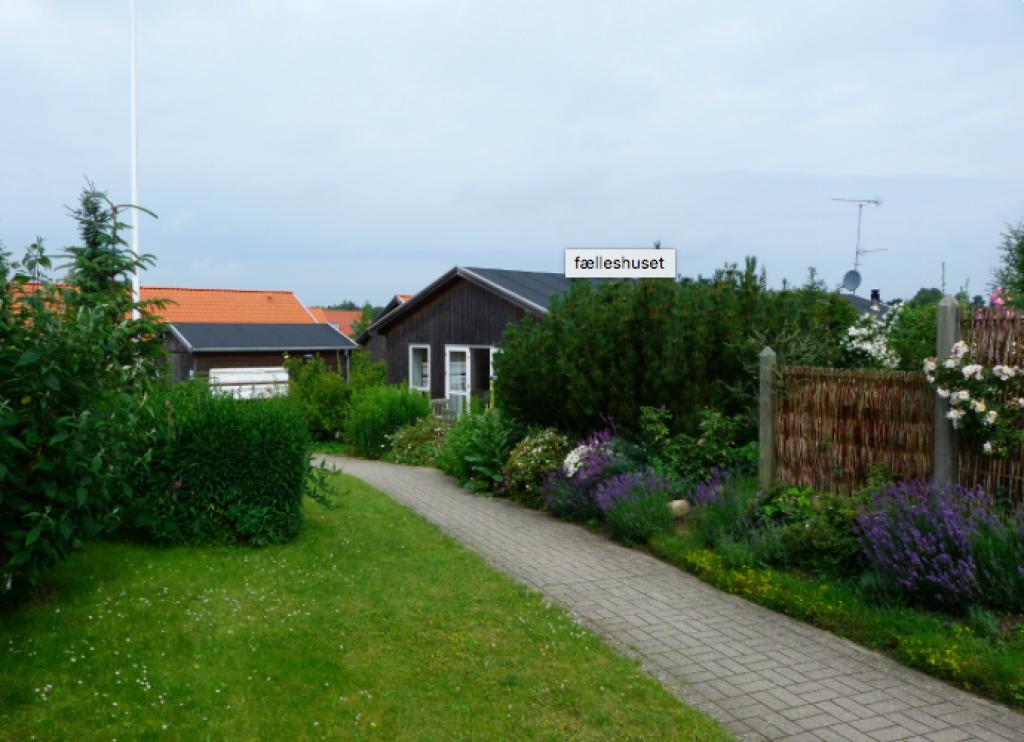 Ved Rørvig Mølle - Skaermbillede_2019-06-20_kl._22.26.59_c44f8969c0b96e495b1f0c54f22bb89d