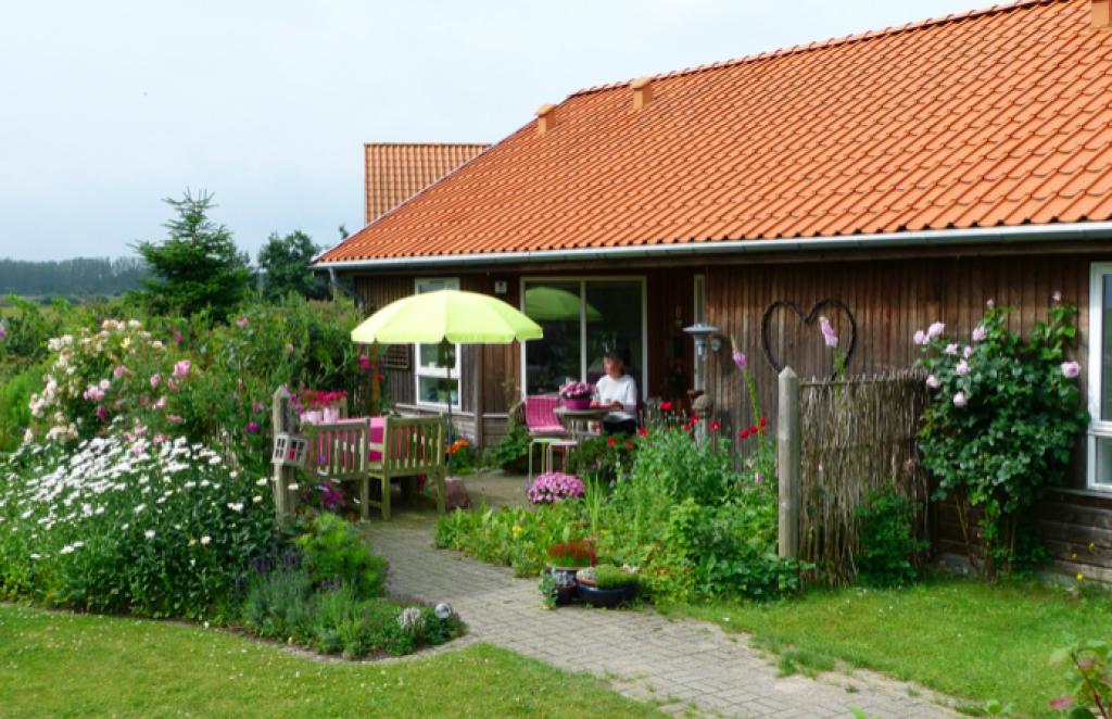 Ved Rørvig Mølle - Skaermbillede_2019-06-20_kl._22.27.09_f15daedb325f885e290c2c666cac71a5