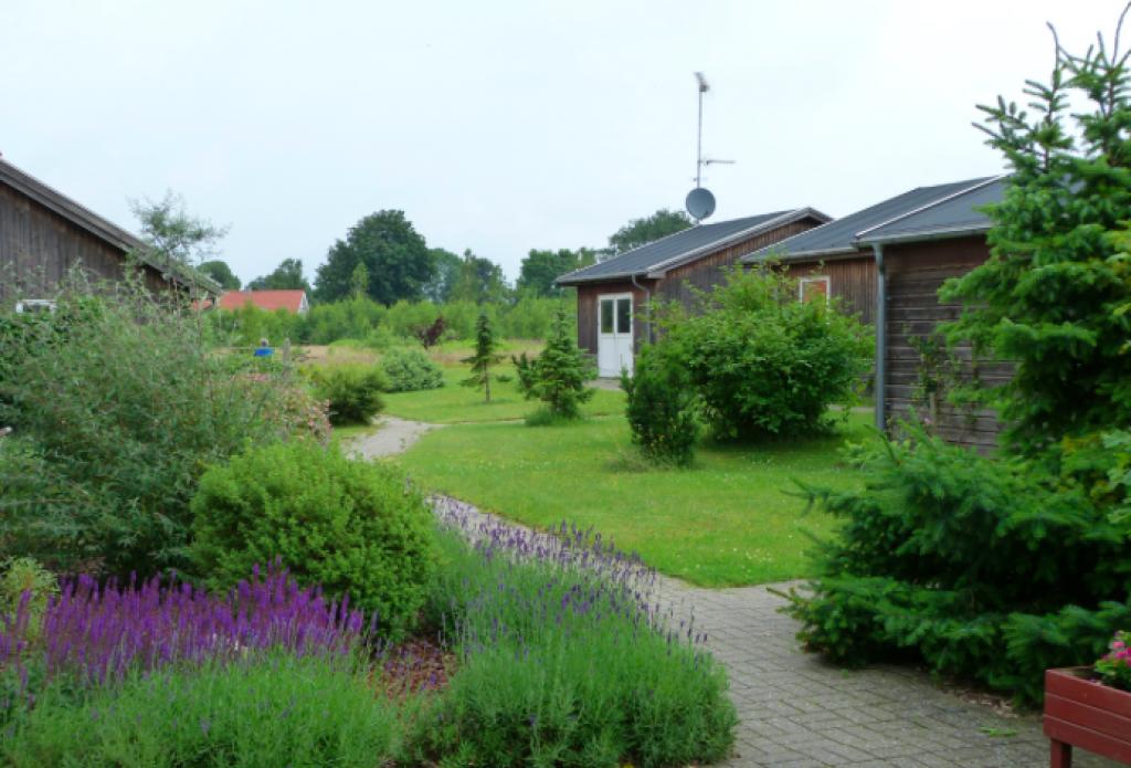 Ved Rørvig Mølle - Skaermbillede_2019-06-20_kl._22.27.28_87c6331d97c06bcaff611a5266cc5c44