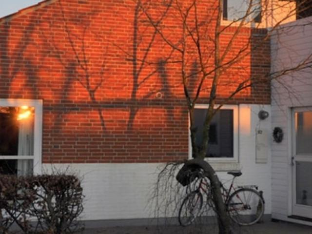 Bøllingsø - cropped-solnedgang1_67614370e66bccbafda8980dc3b616b9