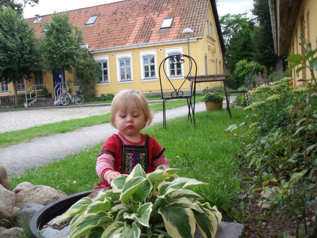 Gl. Grevegården - dec12_006_461c0275069fb8b88d9264a1da3b731f