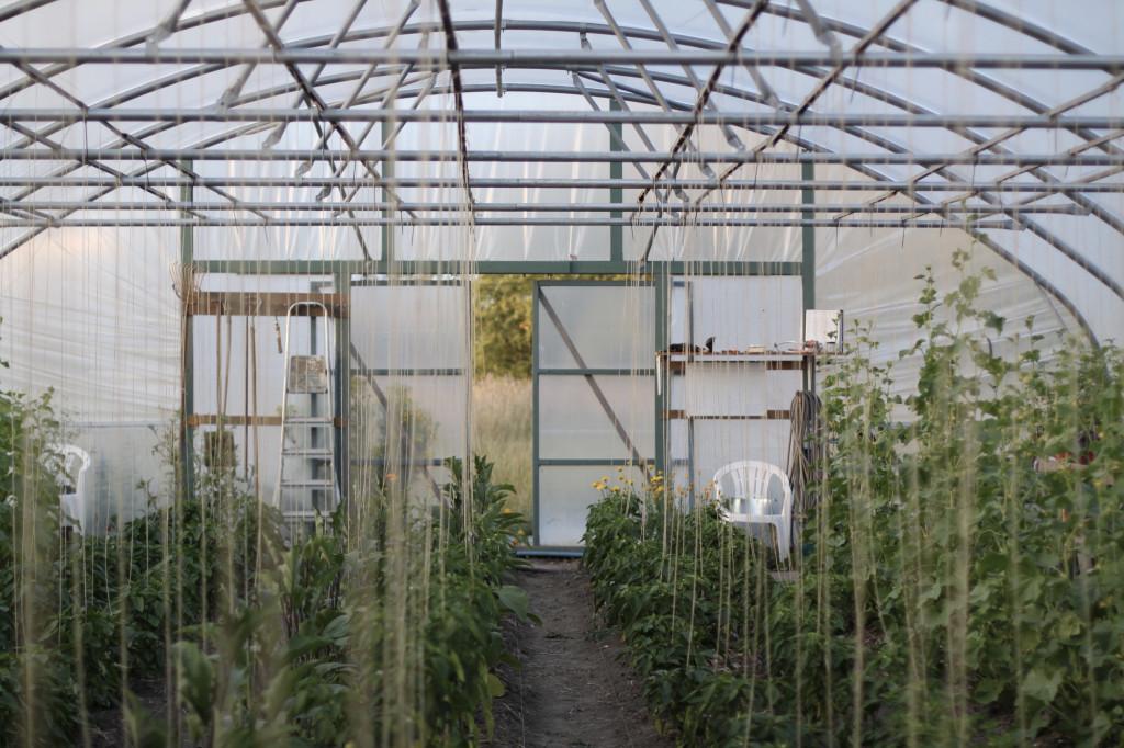 Nybygget arkitekttegnet rækkehus i bæredygtigt bofællesskab. - fullsizeoutput_1e30_ebcd0ea961dbb3053e182d4930a9b3fd